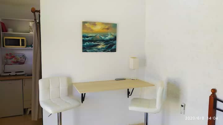 1 Mini Estudio Con Cocina y Terraza Vistas Al Mar