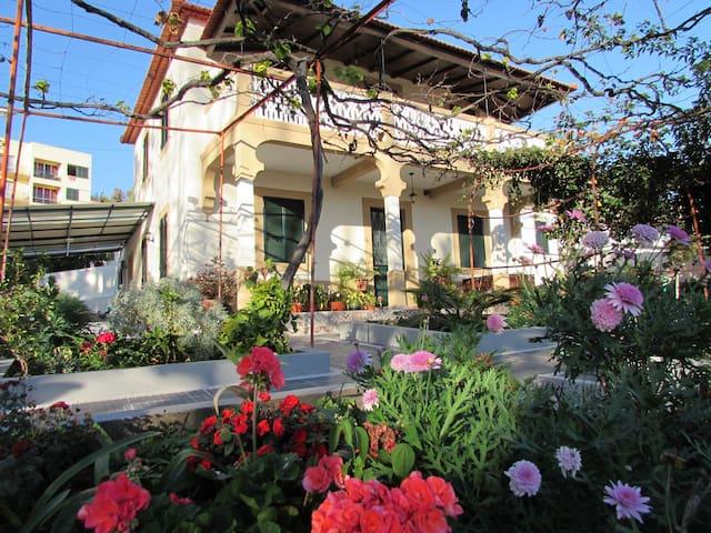 5 bedroom charming Villa, Harbour & City views /AL - Funchal - Villa