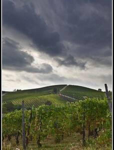 VALTIDONE EVENTI (CAMERA ALBA) - Pianello Val Tidone