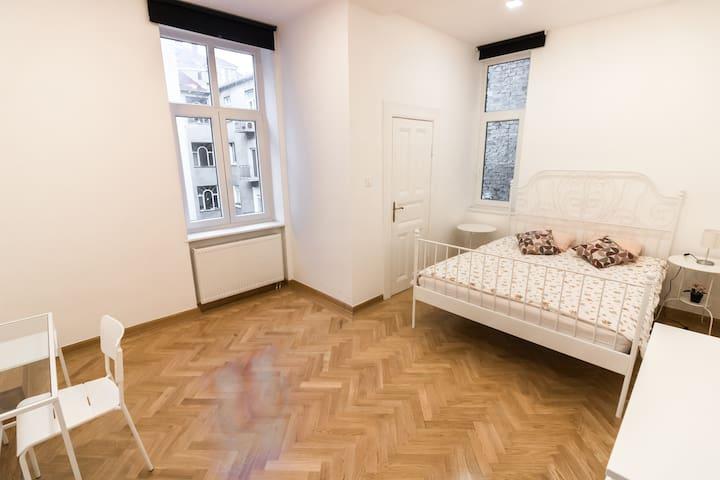 Beautiful Room in the Zagreb Centre I