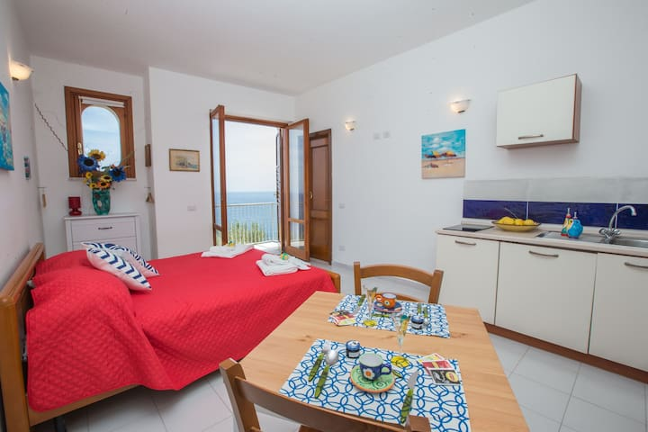 Lovely studio apartment with sea view