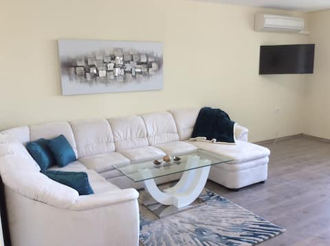 Luxurious, large, completely renovated apartment