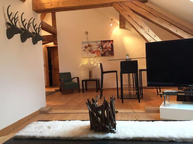 Appartement de charme à la montagne - Bellevaux - Apartamento