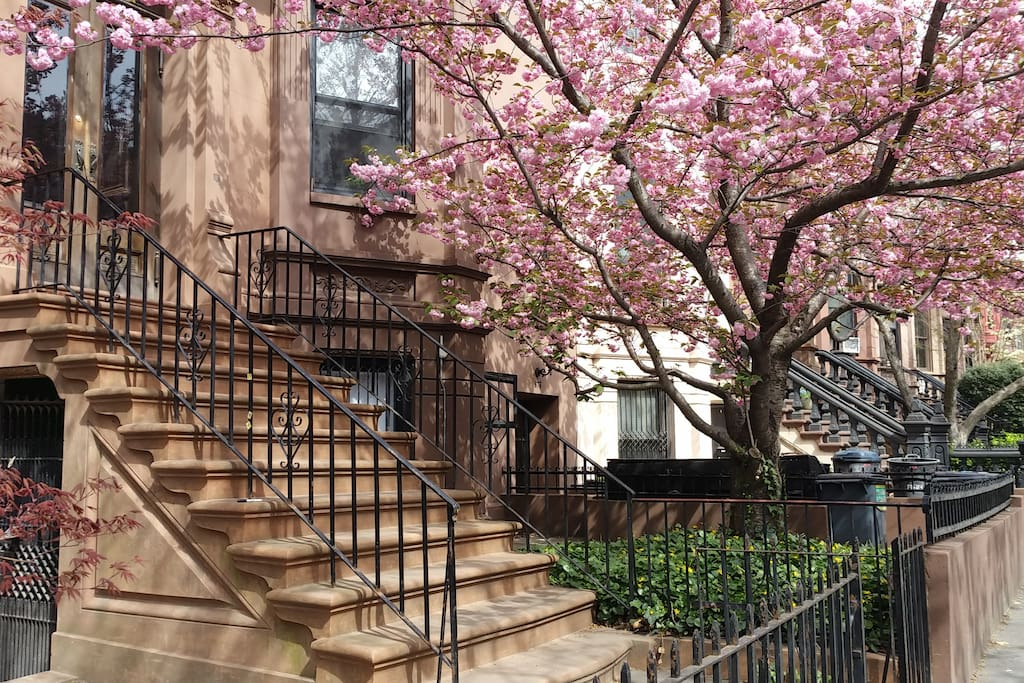 "Park Slope in springtime! As Amy noted ""A truly tranquil apartment on a beautiful and atmospheric block just moments away from the bustle of Park Slopes 5th avenue. Perfect for our business stay. Very clean, quiet and comfortable."""