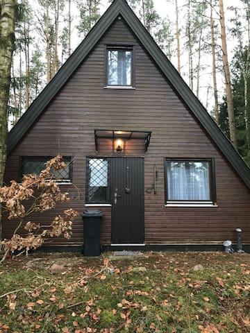 Nur-Dach Haus im Wald in Zernien