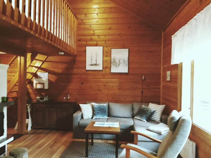 Cozy cabin with a sauna in Levi