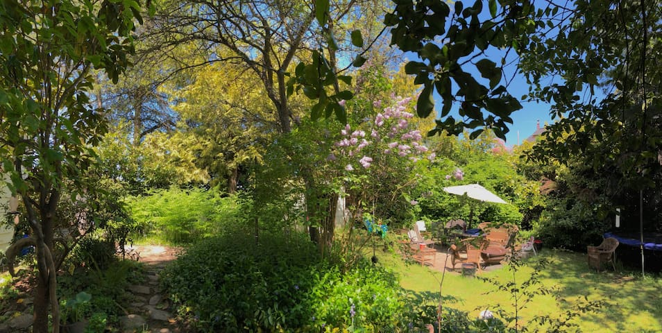 Our garden ❤️