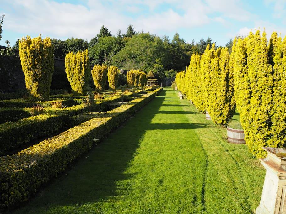 Golden Terrace