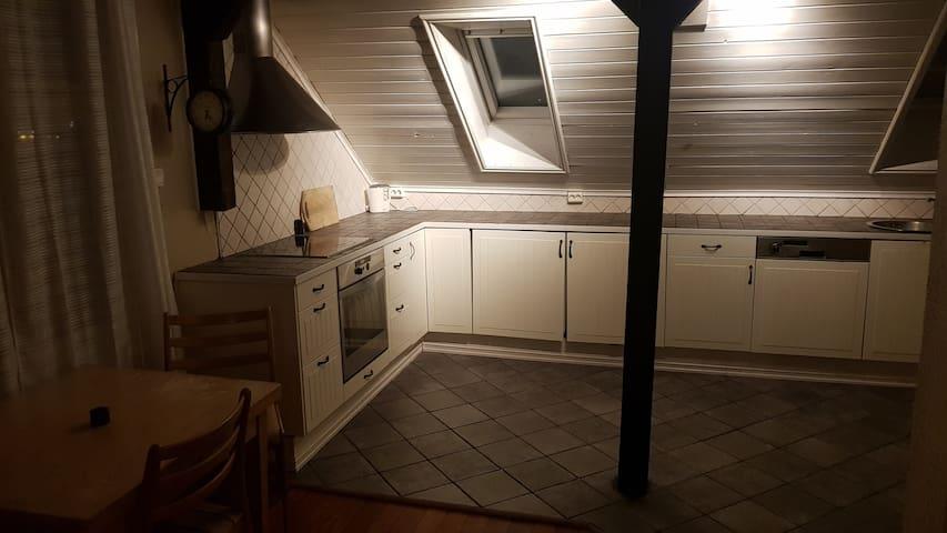 Private apartment 500 meter from Skien sentrum