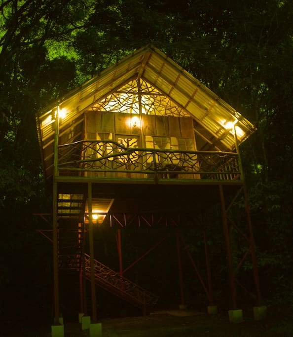 Tree House2 at night in the rainforest