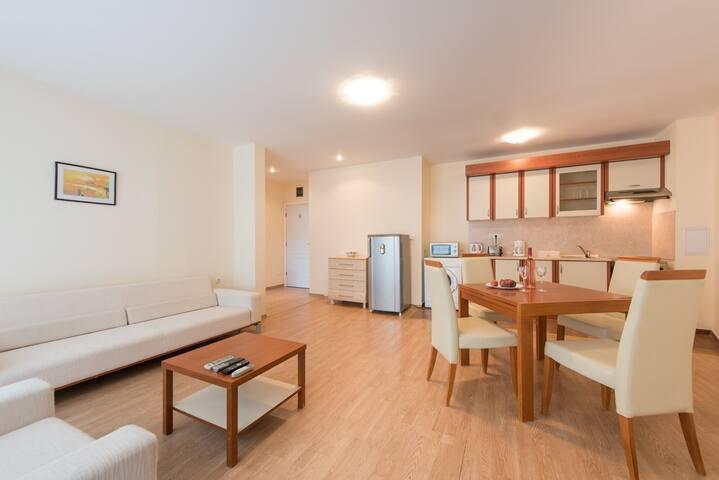 Гостиная и мини кухня/Living room and kitchenette