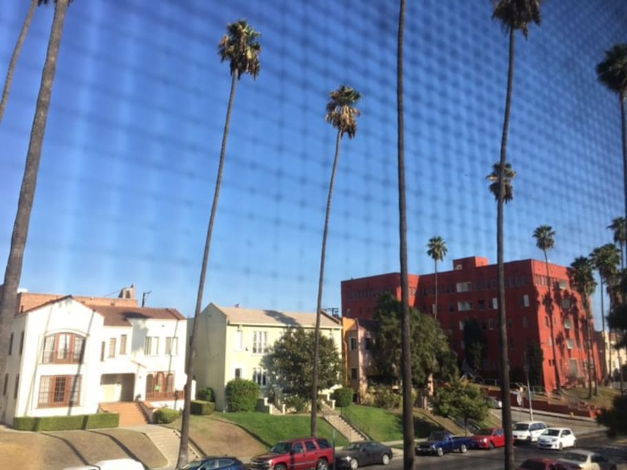 Nice warming LA vibe.