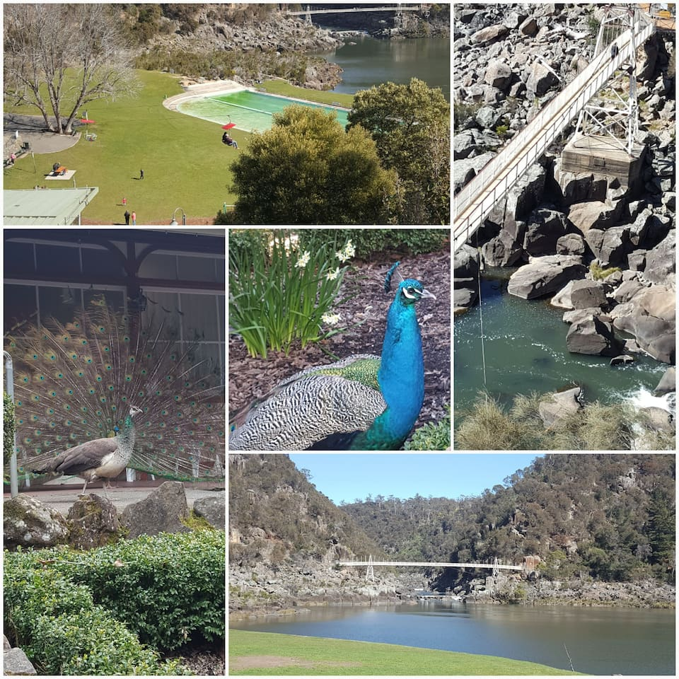 Vistas are a 6min walk down the road from the studio - Gateway to the Cataract Gorge