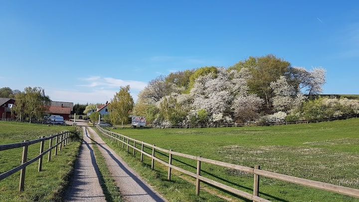 At the countryside close to Malmö B