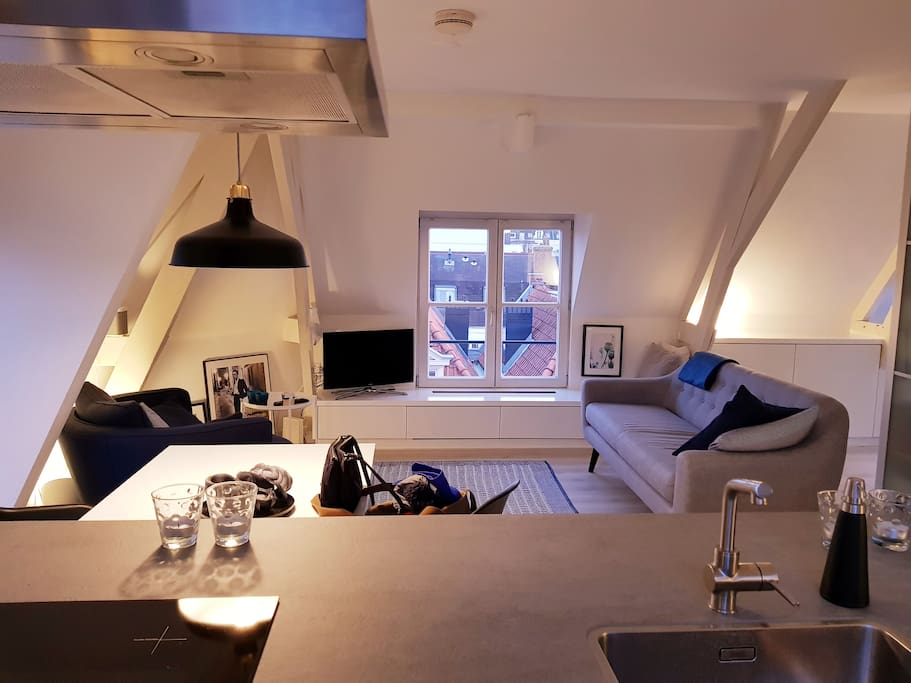 top floor apartment with beautiful view over rooftops of Amsterdam