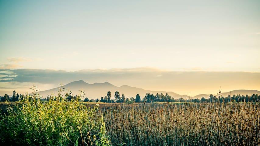 September's Home - Mount Elden Retreat