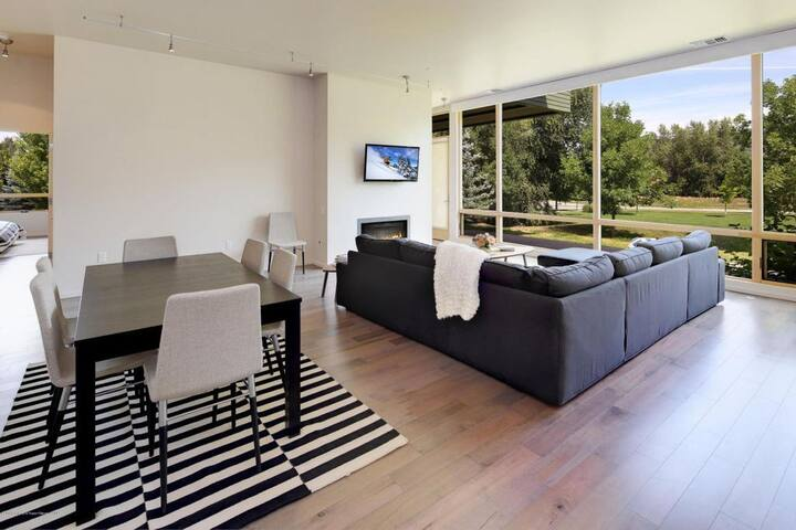 Modern Home in the Heart of the Valley - Basalt - Condominium
