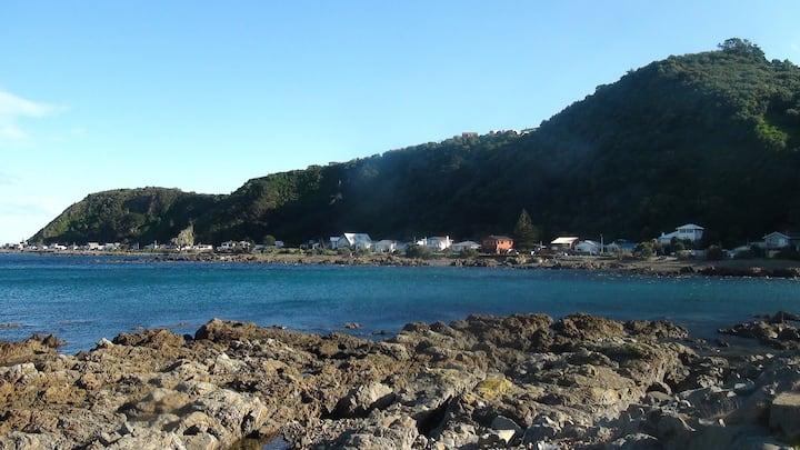 The Little Blue Penguin Studio in Breaker Bay