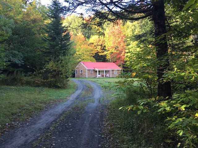 Secluded cabin on brook near skiing and lakes