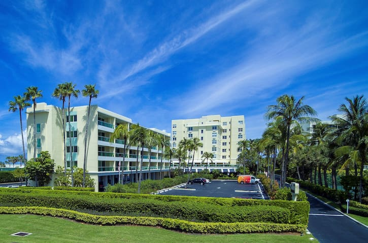 Beautiful One Bedroom Apartment in Palm Beach #510