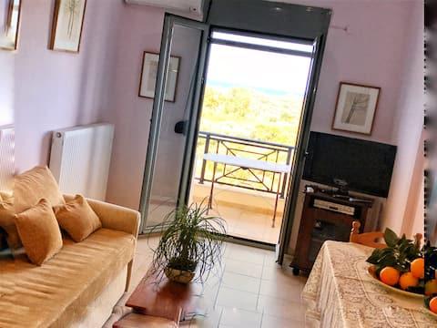 Cezanakis Apartment Istro