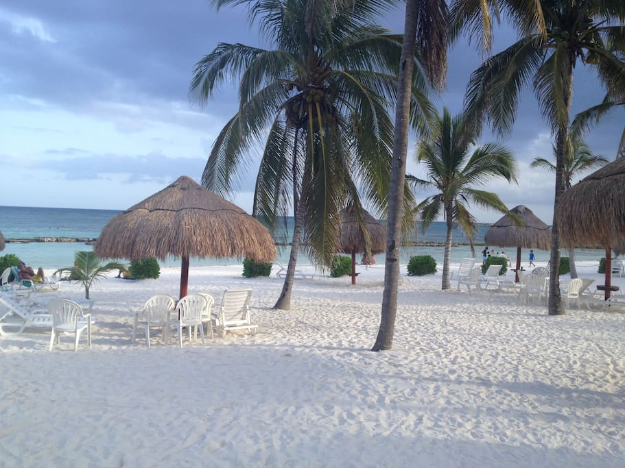 Our beautiful private beach with coconut trees and palapas (chairs provided)