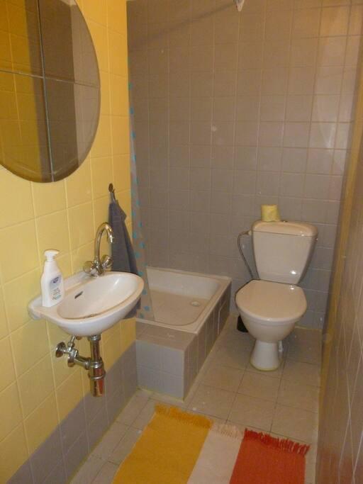 Malá koupelna se sprchovým koutem.