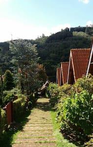 Chalé p/ Casal Lareira e cozinha n7 - Monte Verde