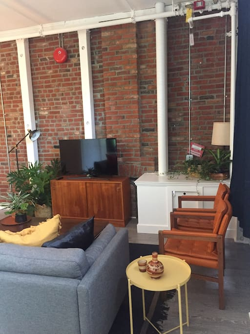 Exposed brick walls. TV with cable. Lots of seating and plants.