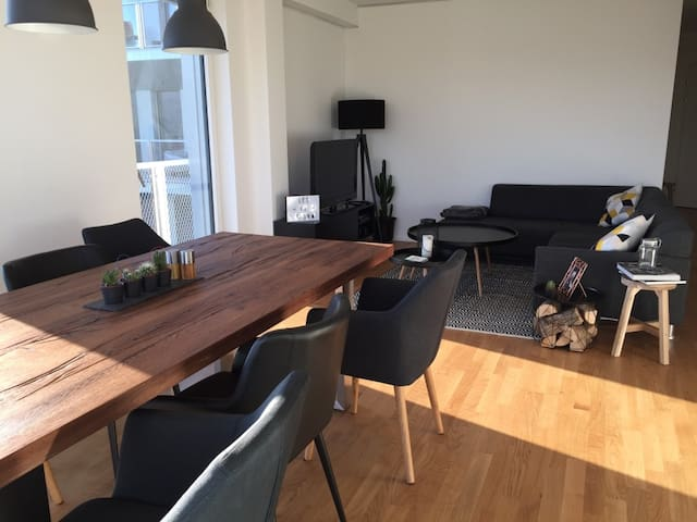 Near BASELWORLD & Art Basel - Münchenstein - Appartement