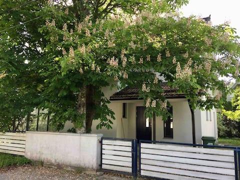 Cosy house in a peaceful neighbourhood