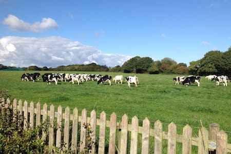 Cow View, Hook Norton - Hook Norton
