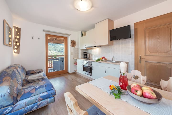 """Charming Apartment """"Schlern - Heigler Hof"""" with Mountain View, Wi-Fi, Balcony, Sauna & Terrace; Parking Available"""