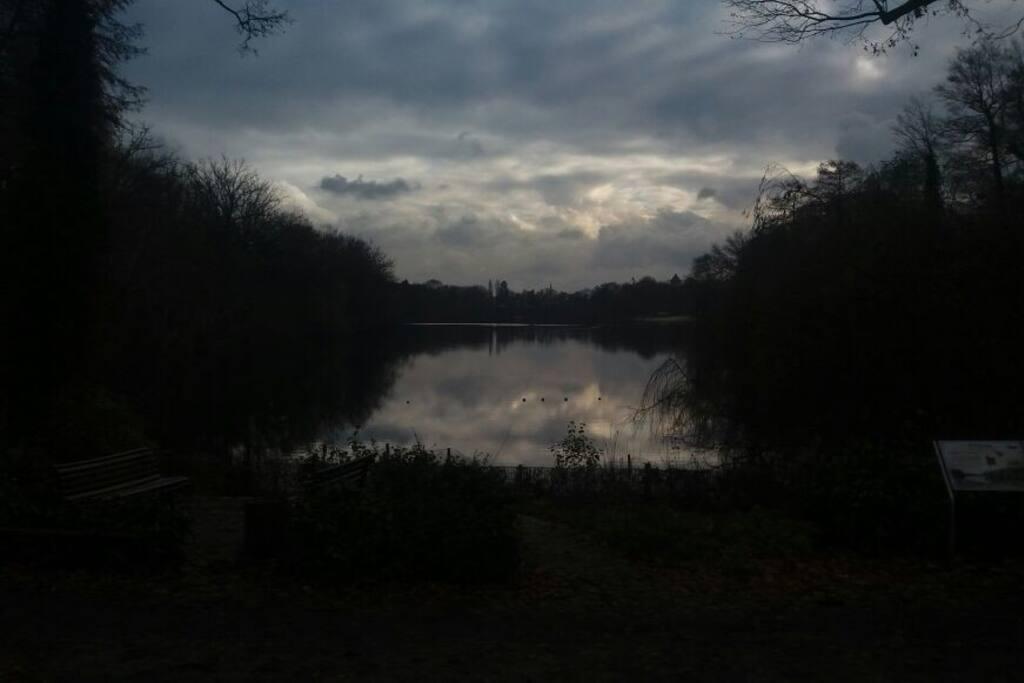 the lake - Plötzensee