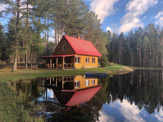 Forest House Einblūti