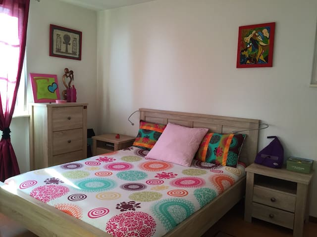 Charming room, Lakeview & 10min walk to train :) - Mont-sur-Rolle - House