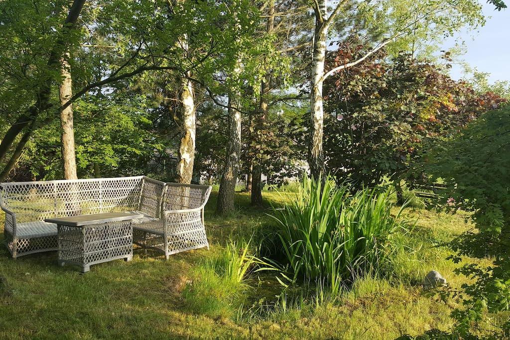 Sitzecke im Wäldchen im Sommer