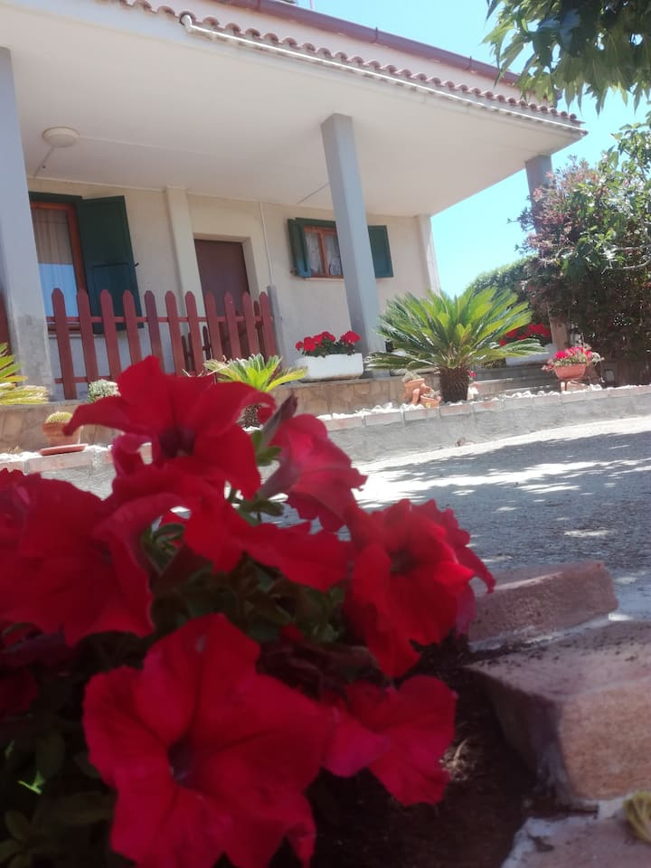lusyguesthouse