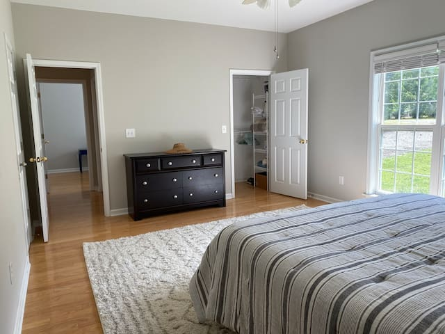 Master bedroom, king bed w/dresser and walk-in closet