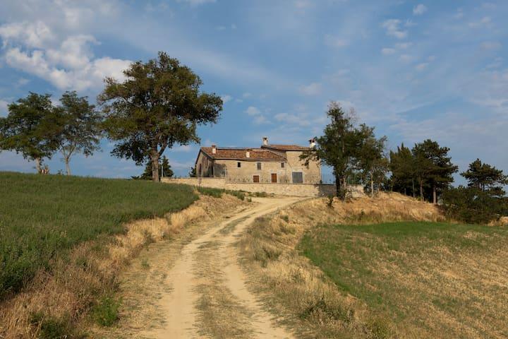 Casa Colonica /Vivi la natura