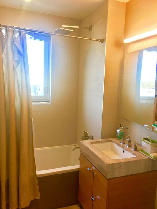 Bathroom with rain shower head and soaking tub.