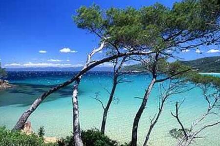 Magnifique villa à 200 m de la mer - Hyères - Villa