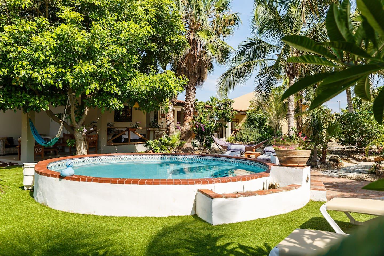 Casalina Garden Stu Plumeria near Marriott - Guesthouses for Rent in ...