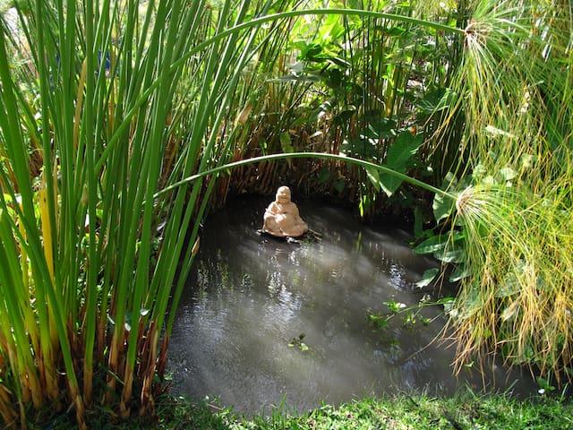 Un Lugar para descansar en medio de la Naturaleza - Tetecalita - Přírodní / eko chata