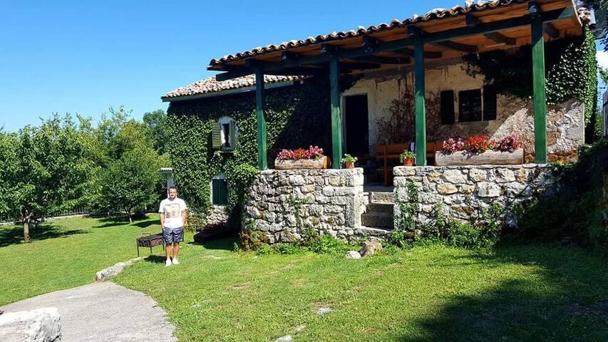 Old house Nilovic