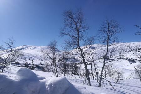 Vegglifjell