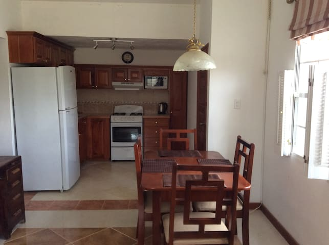Watson Rental. Private one bedroom apartment. - Belmopan - Lejlighed