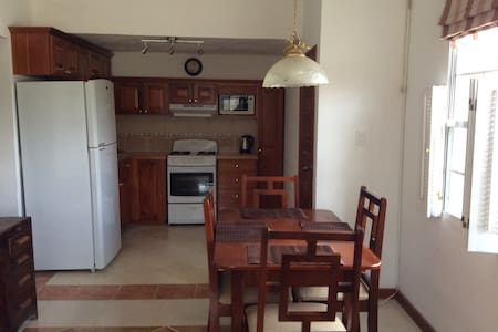 Watson Rental. Private one bedroom apartment. - Belmopan - 公寓