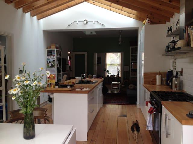 Large modern open plan kitchen