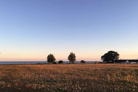 Gården. Small horse farm with sea view in Abbekås. - Skurup S - Rumah